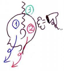 青森,青森市,美容,美容師,美容室,サロン,美容院,金枝,俊平,かなえだ,しゅんぺい,ブログ,個人メディア,人気,有名,口コミ,評判,お客様の声,tokio,インカラミ,イルミナ,スロウ,デジタルパーマ,デジキュア,ロボットパーマ,エアウェーブ,応力緩和,ストレートカール,ワンカール,モロッカンオイル,N.,炭酸泉,ヘアビューザー,ヘアビューロン,Instagram,Facebook,Twitter,小顔,ディズニー,Disney,店長,表参道,原宿,青山,渋谷,東北,悩み,欠点,改善,髪質改善,メンズ,髪,ヘア,アレンジ,コテ,おしゃれ,個人店,骨格補正,デザインカラー,グラデーションカラー,バレイヤージュ,ユニコーンカラー,インナーカラー,クセ毛,天然パーマ,天パ,テンパ,プロフェッショナル,スタイリスト,ヘアメイク,ヘアケアマイスター,痛まない,傷まない,ツヤ,サラサラ,トリートメント,ヘッドスパ,乾燥,紫外線,パーティ,イベント,セット,アレンジ,アップ,スタイリング,似合わせ,化粧品,コスメ,指名,ナチュラル,キュート,モード,エレガント,フェミニン,クール,モダン,レトロ,ガーリー,ストリート,可愛い,美,一番,優しい,トレンド,流行,こだわり,モデル,予約,LINE@,Hotpepper,ホットペッパー,メール,コスメパーマ,駅前,駅近,カウンセリング