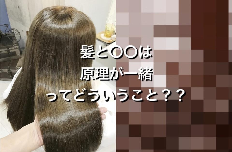 知るだけで スタイリング が 得意 に!? 髪 と 原理 が似ている あるモノ とは?